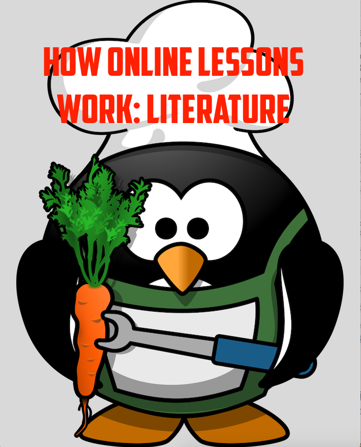 How Online Lessons Work: CREDIBILITY - LITERATURE REVIEW